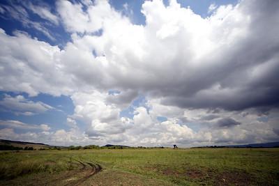 Big sky, Masai Mara, Kenya