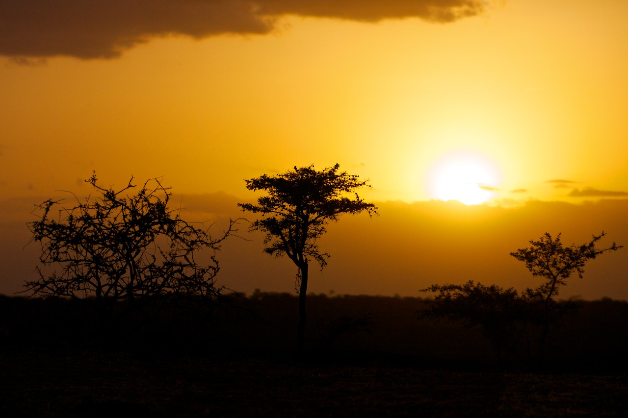 Sunset, Samburu, Kenya
