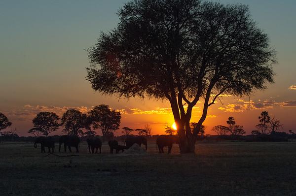 Sunet Africa