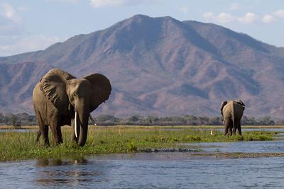 Zambezi Escarpment