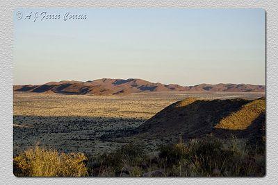 A magia do Kalahari ao poente Kalahari magic at sunset
