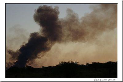 Madikwe - queimada no mato Madikwe - bushfire