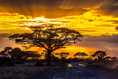 Sunset - Amboseli National Park, Kenya