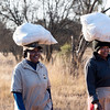 NB Safaris staff workers carrying laundry
