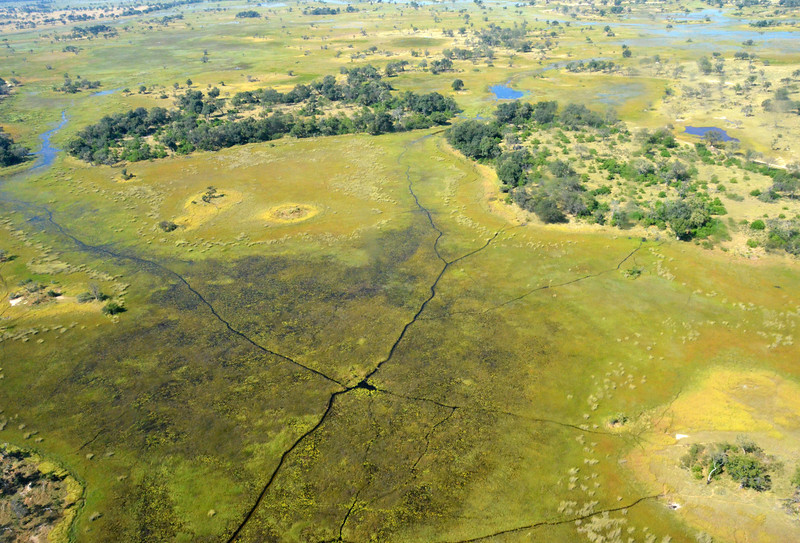 Okavango Aerial View 5