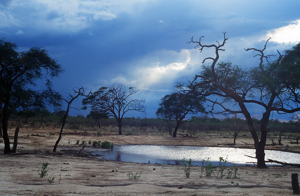Namibia Africa Nature Images