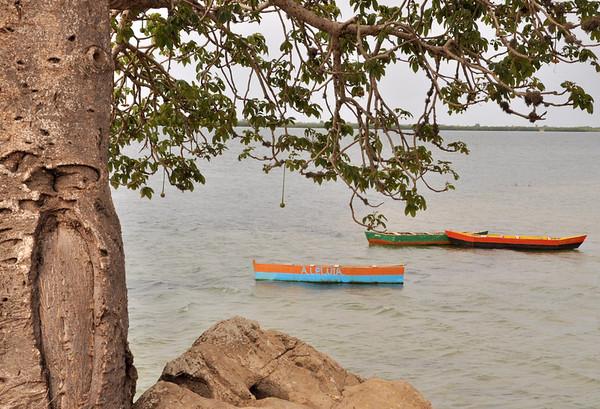 Boabab and boats at Morro da Cruz, just south of Luanda, Angola.
