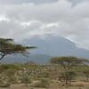 Flocks at Mount Meru