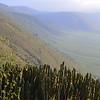 Candelabra Crater