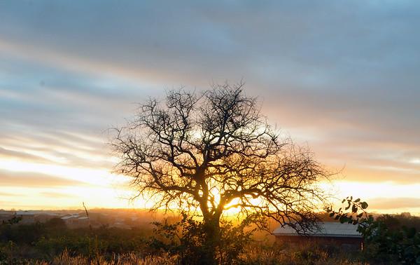 Beitbridge & Southern Zimbabwe Nature