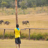 From the lawn at Hwange Safari Lodge, Zimbabwe, a boy watches elephants come to water.