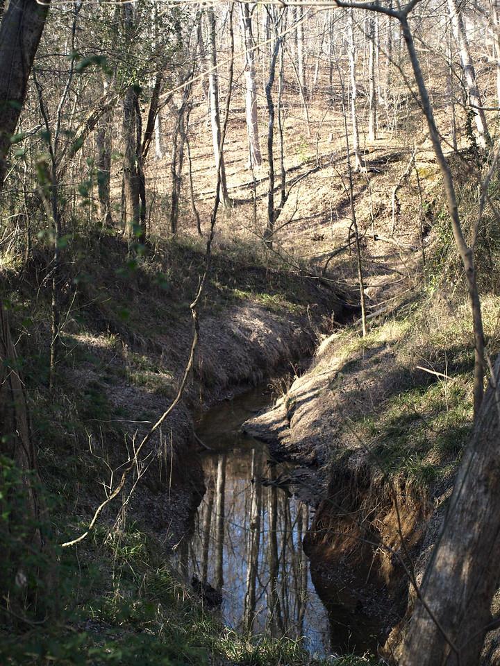 February 3 2008