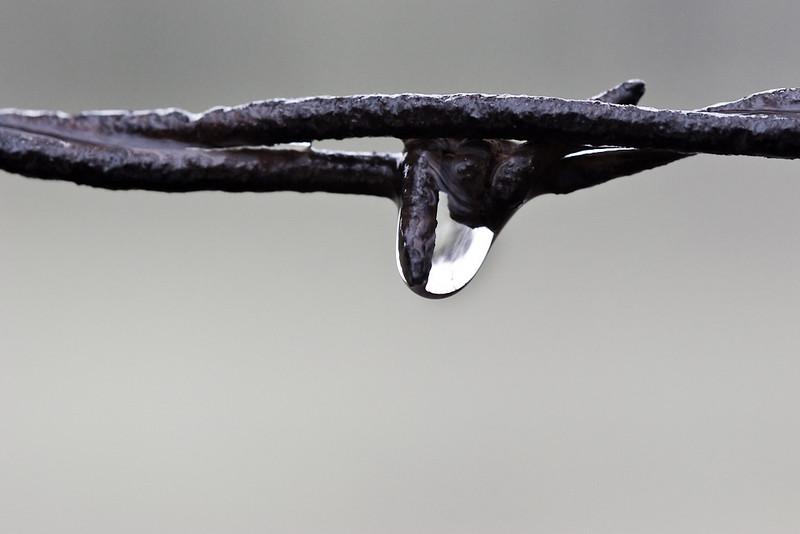 Barbed droplet