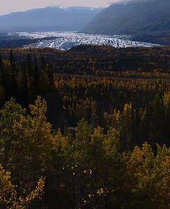 Matanuska glacier with fall colors.