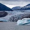 Alaska Juneau Mendenhall Glacier 6-26-16_MG_9232