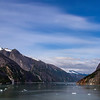 Alaska Tracy Arm 6-28-16_MG_0037