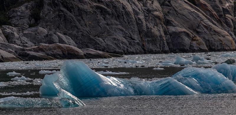 Alaska Tracy Arm Iceburg 6-28-16_MG_9959