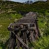 Alaska Skagway White Pass-Yukon Rail 6-24-16_MG_9524