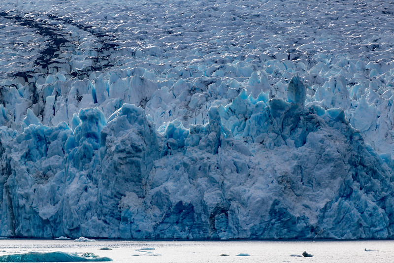 Alaska Tracy Arm Dawes Glacier 6-28-16_MG_9937