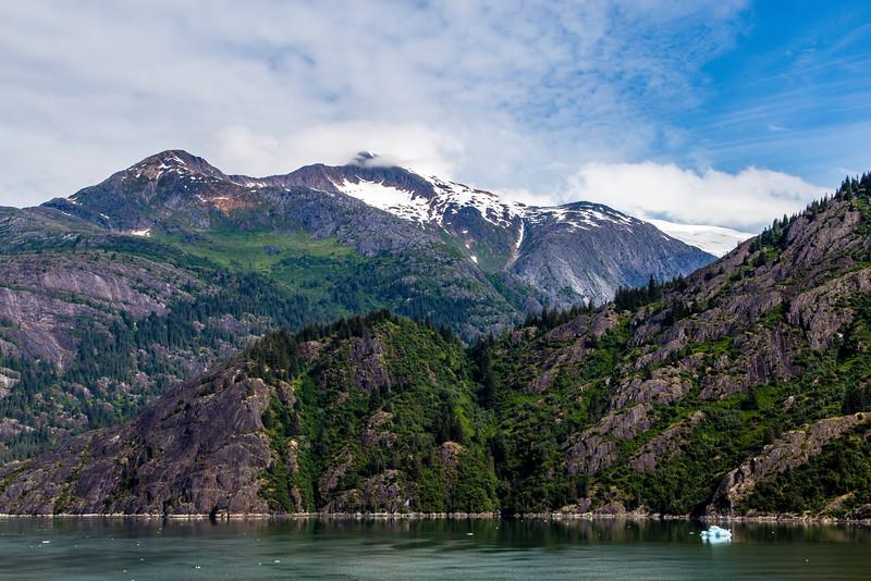 Alaska Tracy Arm 6-28-16_MG_0119