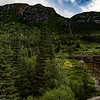 Alaska Skagway White Pass-Yukon Rail 6-27-16_MG_9404