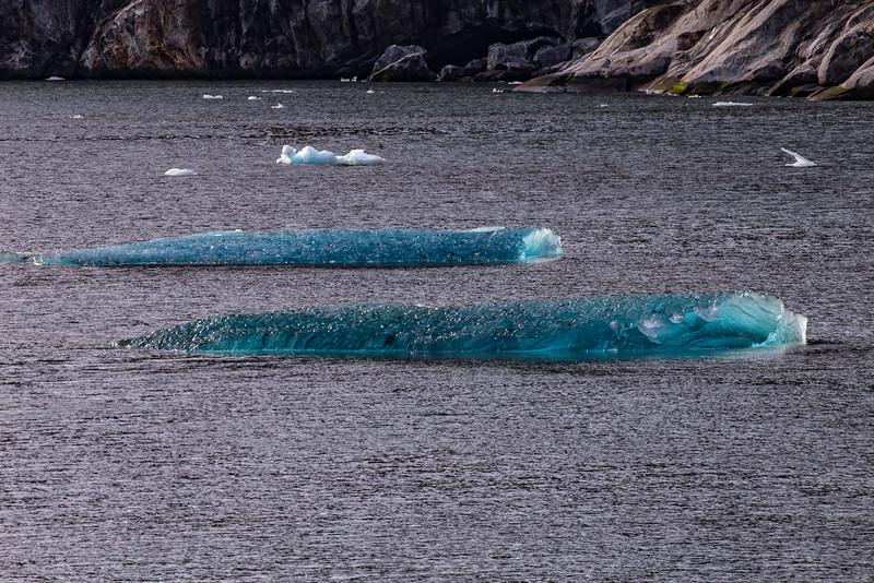 Alaska Tracy Arm Iceburgs 6-28-16_MG_9938