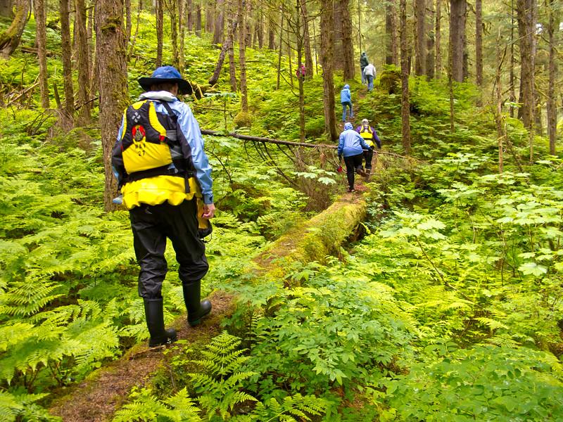 Chuck River Wilderness Hike<br /> Windham Bay, Chuck River Wilderness
