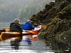 Kayaking Chuck River Wilderness<br /> Windham Bay, Chuck River Wilderness