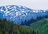 Clearcutting<br /> alaska Wilderness Cruise