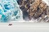 North Sawyer Glacier<br /> North Sawyer Glacier Calving, Tracy Arm Fjord, Alaska