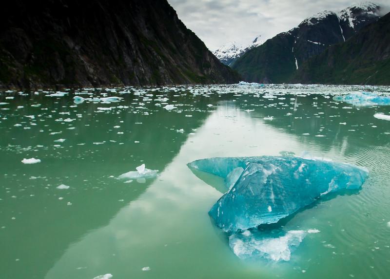 Heart-shaped Bergy Bit<br /> Heart-shaped Bergy Bit, Tracy Arm Fjord, Tongass National Forest, Alaska