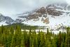 Crowfoot Glacier<br /> Crowfoot Glacier, Banff National Park, Alberta, Canada