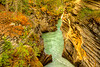 Athabasca Falls Gorge<br /> Athabasca Falls Gorge, Jasper National Park, Alberta, Canada