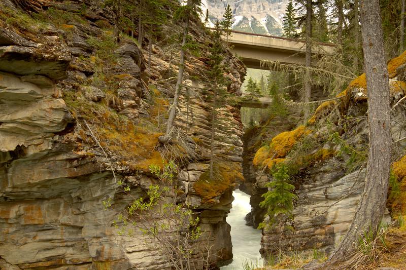 Athabasca Fall Gorge Bridges<br /> Athabasca Falls Gorge, Jasper National Park, Alberta, Canada