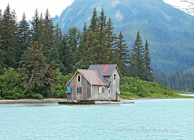 In this part of Alaska people are not allowed to build houses on National Forest Lands, so they have become resourceful and build floating river homes and anchor them in the rivers. No matter where they build they have to either boat or float plane out to their house so it doesn't matter how or where they place them. This works well they say.