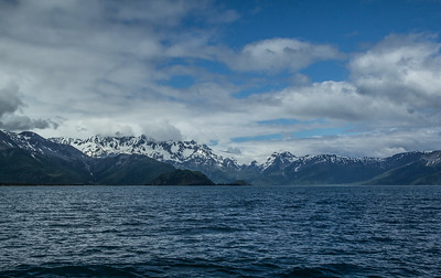 Kenai Fjords National Park; Resurrection Bay, Alaska