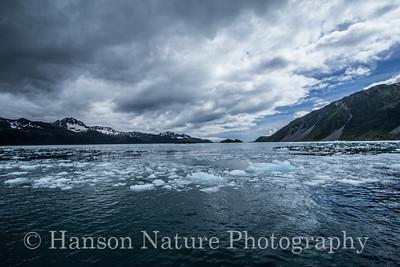 Kenai Fjords National Park; Resurrection Bay, Alaska
