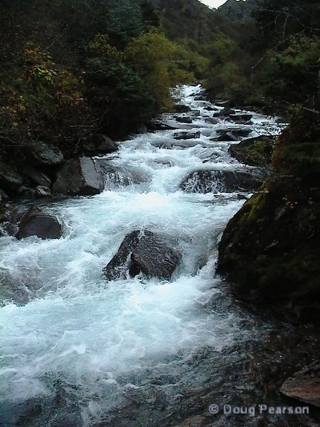 A view of a creek near Juneau Alaska.
