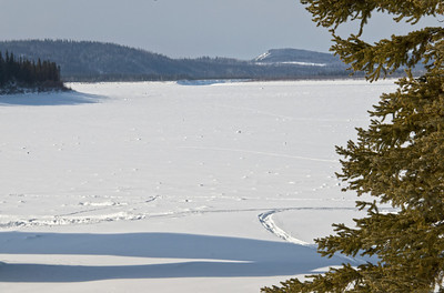 The Yukon River in March