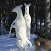 """ Dancing With the Stars ""  Wild Albino whitetail deer of Boulder Junction Wisconsin"