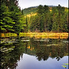 <h3>Eucalia Lake. Algonquin Ont.</h3> <h5>Canon350xt, Sigma28-70 at 28mm, Sing Ray LB intensifier,<br> 0.6s at f/11.0</h5>