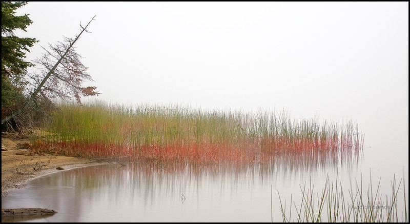 <h3>Lake of Two Rivers. Algonquin Ont.</h3> <h5>Canon40D, Canon 70-200 at 70mm, Sing Ray LB polarizer,<br> 4.0s at f/22</h5>