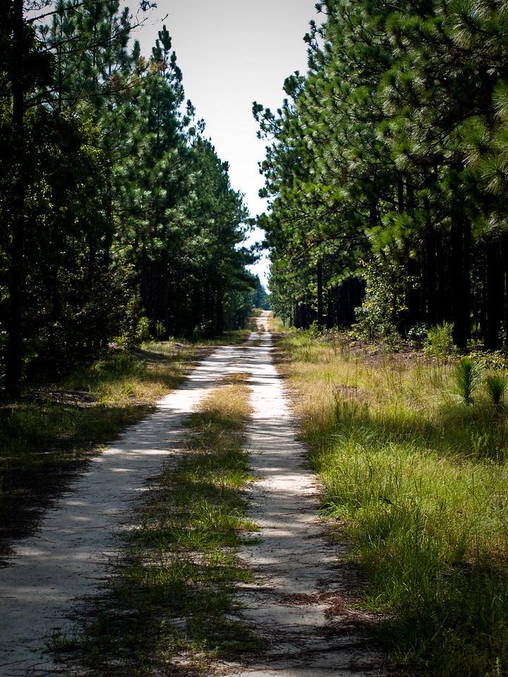 The Road Goes On Forever- REK