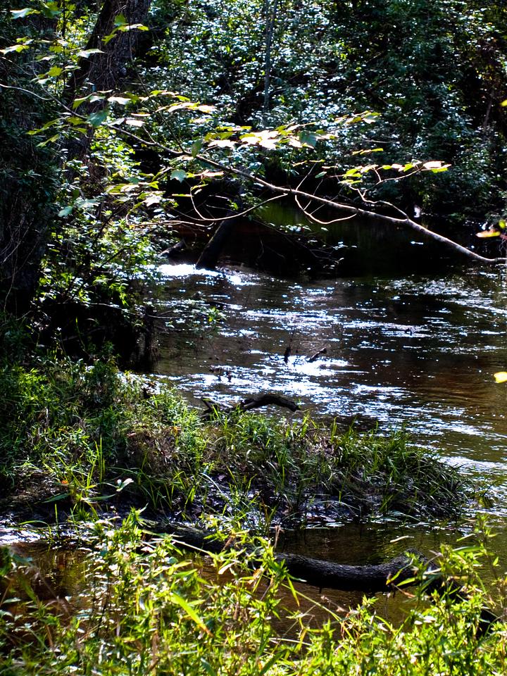 Rockfish Creek