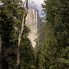 El Capitan ~ Yosemite National Park