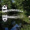Daphna's Bridge