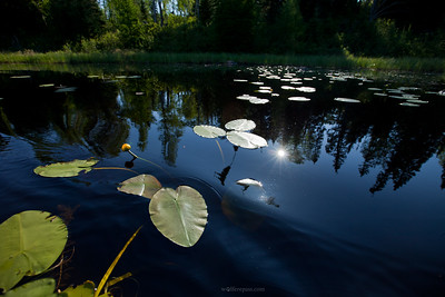 Boundary Waters Canoe Area Wilderness, Minnesota, USA