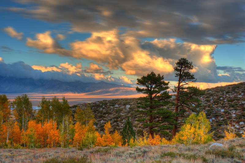 Fall colors across the Owens Valley in California