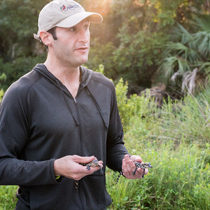 Matt, the field team leader, holds two newly hatched alligators.