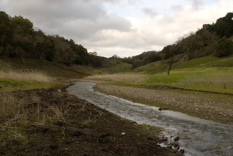 Looking downstream towards the bend in the creek after which the dam sits, waiting for rain. Normally this is all under water.